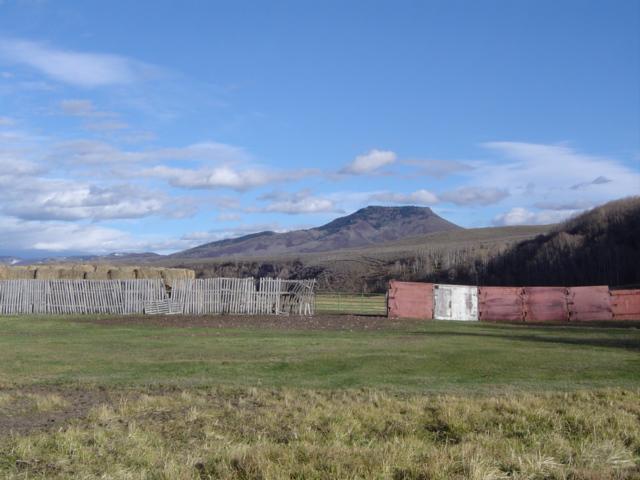 2007 Colorado Elk Hunt Photos